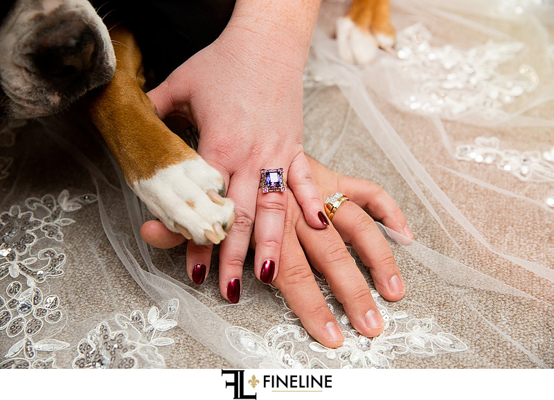 bride groom and dog photo by FINELINE Weddings Greensburg, PA