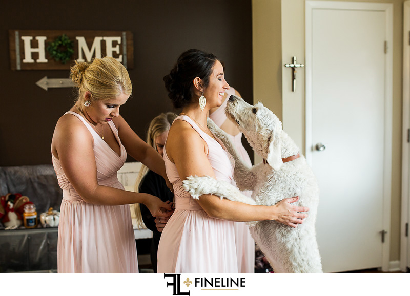 bridesmaids with dog photo by FINELINE Weddings Greensburg, PA