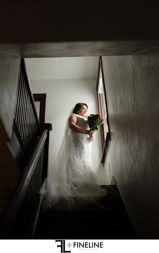 bride on stairs photo by FINELINE Weddings Greensburg, PA